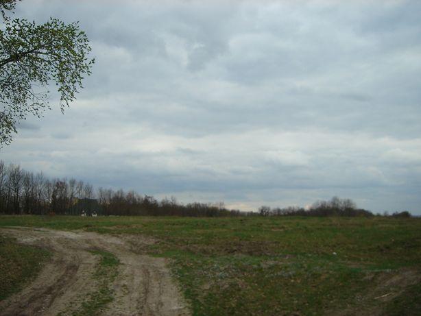 СРОЧНО продаю земельну ділянку 423 сотки.