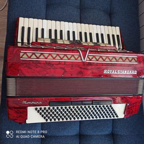 Akordeon Royal Standard Montana