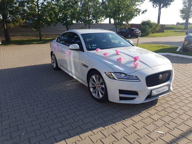 Auto do ślubu , Samochód do ślubu Jaguar XF R-Sport