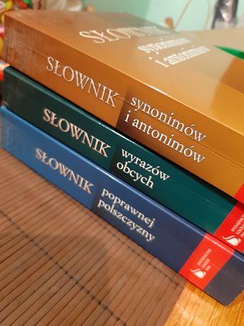 Zestaw trzech słowników PWN