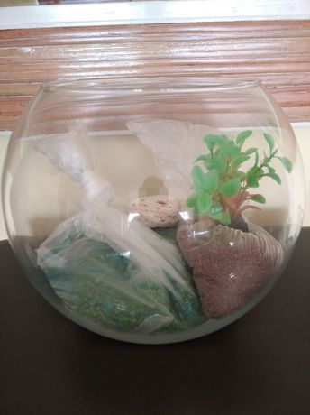 Aquário globo de vidro