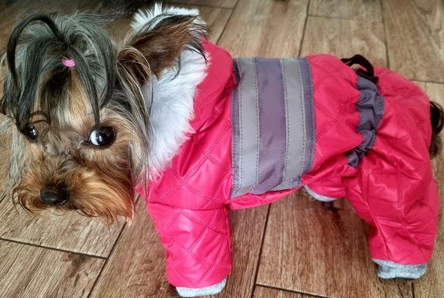 kombinezon zimowy dla psa york ,shih tzu,mops ,jamnik szyty na miare