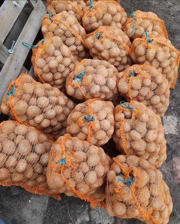 Ziemniak Wineta od rolnika
