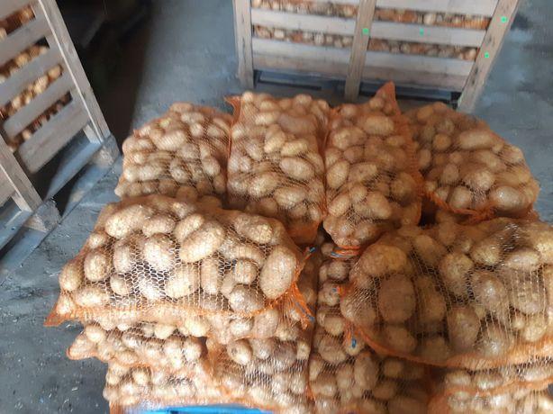 Sprzedam ziemniaki jadalne denar