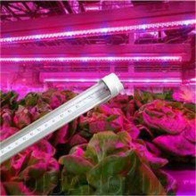 Фитолампы для растений (рассады). Фітолампи для рослин розсади