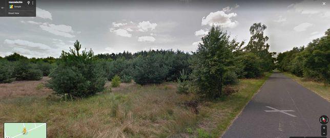 Piękna działka w otulinie Puszczy Kamponowskiej przy lesie w cenie ROD