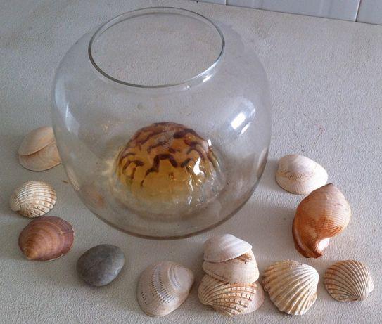 aquário/floreira antigo