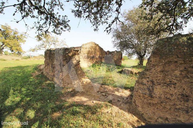 Terreno Misto Com 6 500 M2, Com Ruina/Moradia, Aldeia Dos Palheiros, O