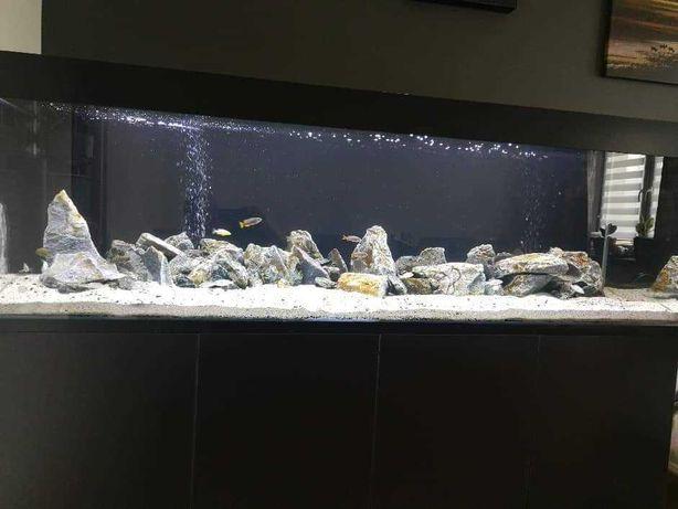 Akwarium na wymiar 150x50x50 10mm FLOAT PRABAT 7%