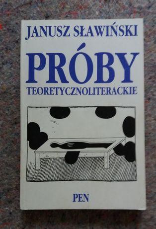 Janusz Sławiński: Próby teoretycznoliterackie