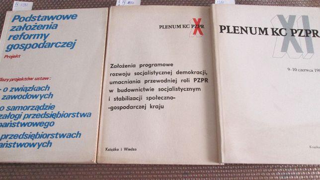 Założ. Program. na IX Nadzw.Zjazd PZPR; X i XI Plenum KC PZPR 1981