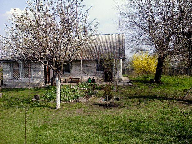 Дом с зем. участком, 48 км от Киева (с. Пинчуки, Васильковский р-н)