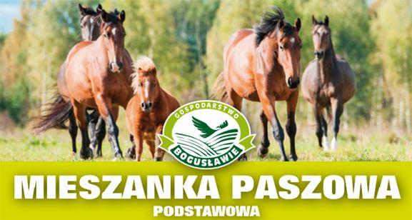 Mieszanka paszowa podstawowa Gospodarstwo Bogusławie
