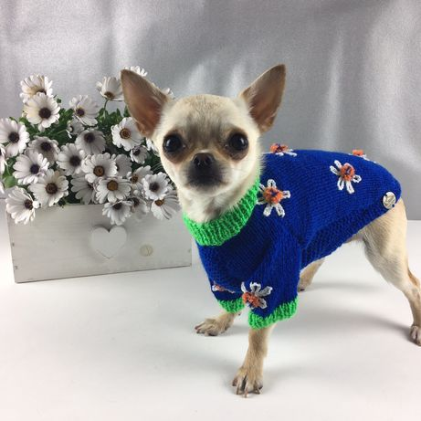 Sweterek dla Chihuahua Sweter dla psa
