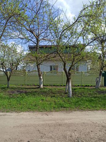Продам дом, Киевская обл., Згуровский район, с.Середовка