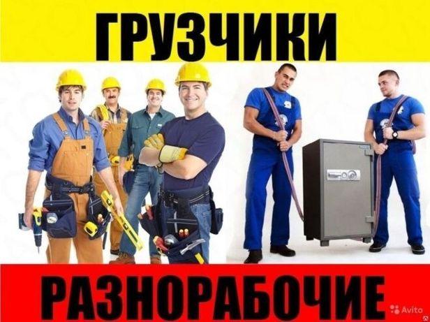 Подсобники,грузчики,разнорабочие  Киев