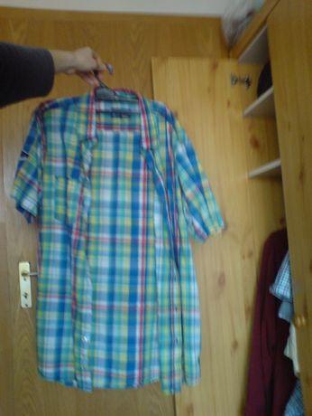 202.koszula TROPICAL Island Resort XL 4344 identic