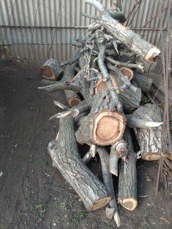 Продам дрова ореха