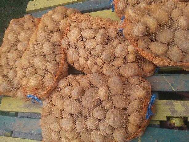 Ziemniaki Denar, Vineta z własnej uprawy