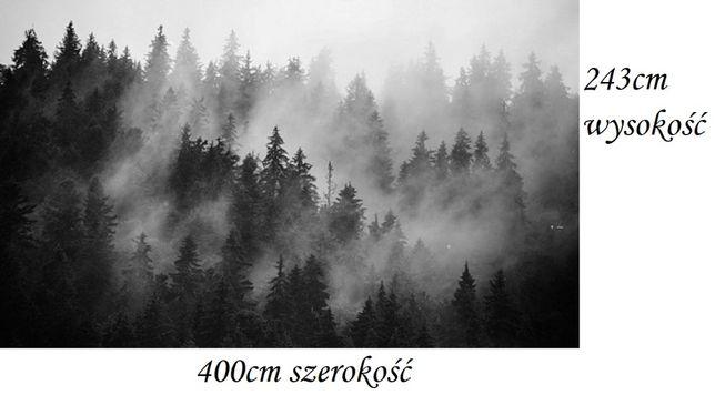 Fototapeta mglisty las biało-czarna 400 x 243