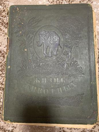 Антикварная Книга жизнь животных 1 том раритет