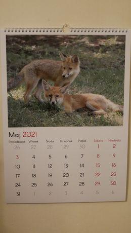 Sprzedam kalendarz drukowany A3 na 2021 rok zdjęcia mojego autorstwa.