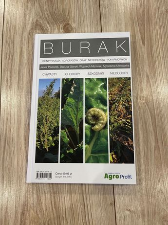 Burak Identyfikacja agrofagów Uprawa buraka
