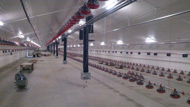 Wyposażenie,serwis urządzeń w budynkach inwentarskich (kurnikach)