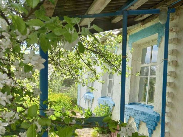 Продается дом с. Винаровка, ул. Левадная 12,  Ставищенский район