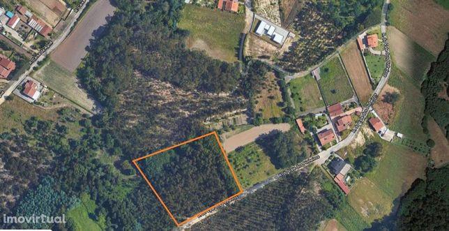 Terreno Rústico em Eixo e Eirol, Aveiro