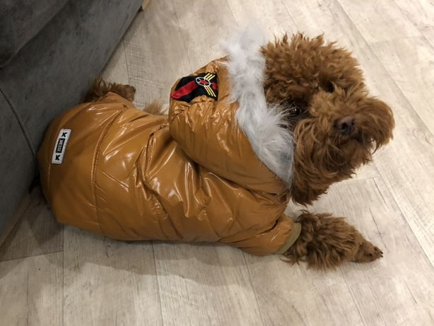 Комбинезон зимний куртка для собак одежда на зиму теплая