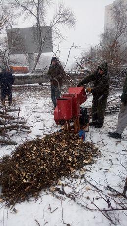 Обрезка деревьев и кустов, лечение деревьев, дробление веток.