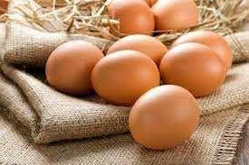 Инкубационное яйцо мясо-яичных пород