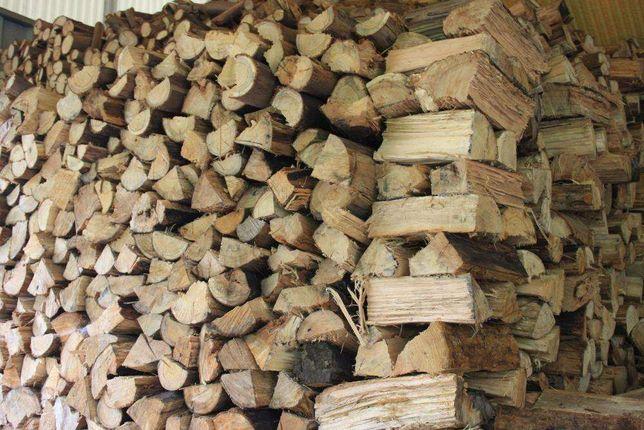 Lenha Seca - Dry Wood