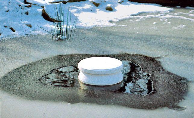 Антиобледенитель для пруда Oase Ice Preventer (Германия)