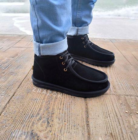 UGG мужские ботинки натуральная замша черные зимние мини угги короткие