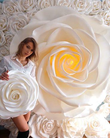 Gigantyczna podświetlana róża