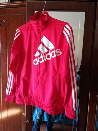 Casaco Adidas - Novo - M com portes inc.