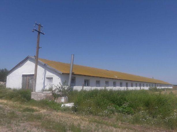 Продам ферму (животноводческую)