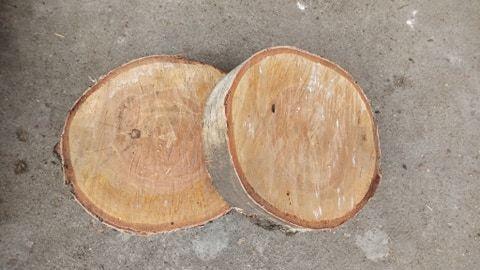 Plastry drewna