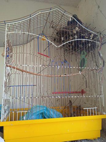 Клетка попугая большая