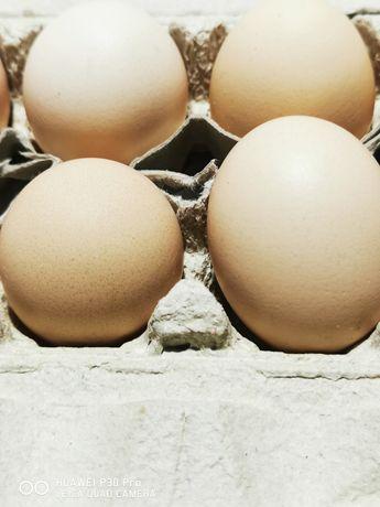 Swojskie jajka.