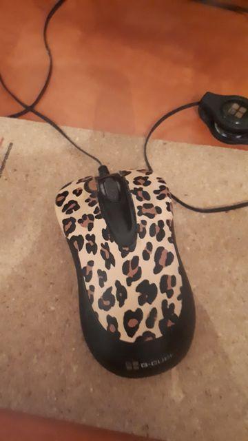 Мышь компьютерная.