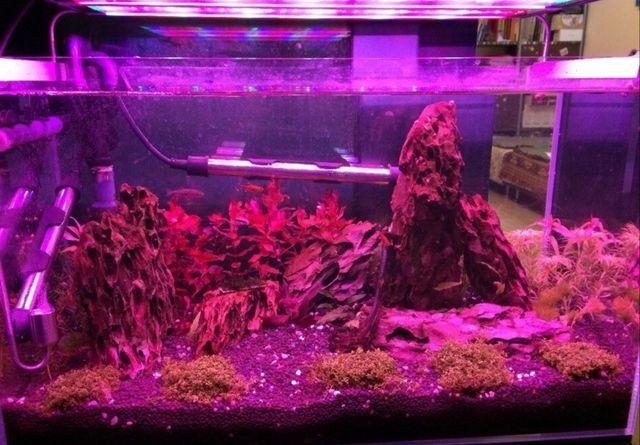Фитолампа для аквариума , растений
