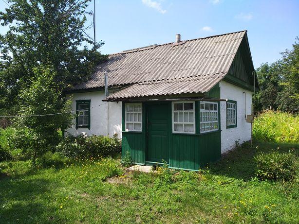 Продам будинок в Бахмачі або обмін на малосімейку