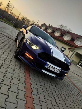 Ford Mustang Premium Navi PL Camera Fotele Recaro