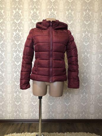 Зимова курточка  terranova xs
