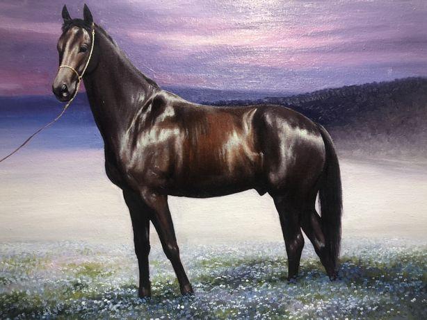 Картина Лошадь Природа