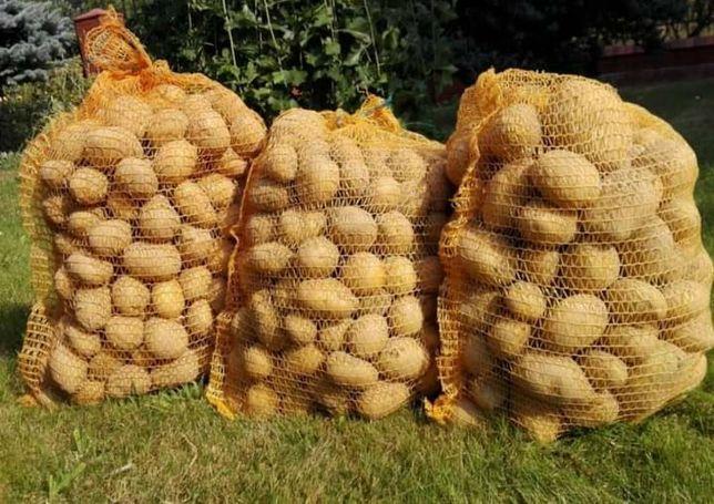 Ziemniaki vineta worek 15 kg za 12 zł.