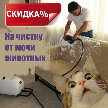 Чистка диванов, ковров, мебели, химчистка, мойка диванов, от мочи